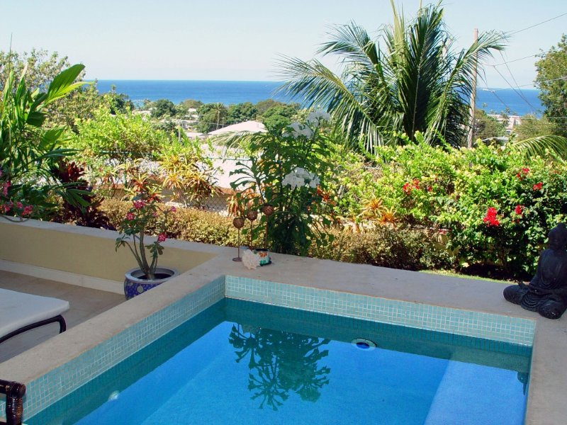 luxury apartment with plunge pool, (sole use) terrace and sea views, location de vacances à Reeds Bay
