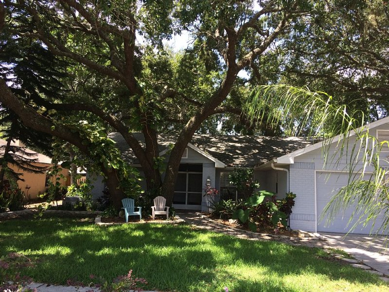 Fenced Private Heated Pool and Pet-Friendly, alquiler de vacaciones en New Port Richey