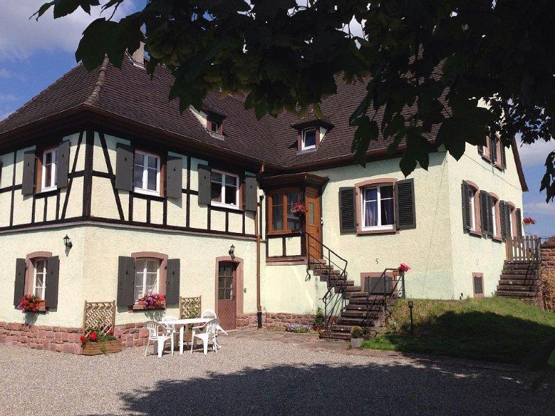 Gîte tout confort au coeur du vignoble Alsacien, holiday rental in Kientzheim