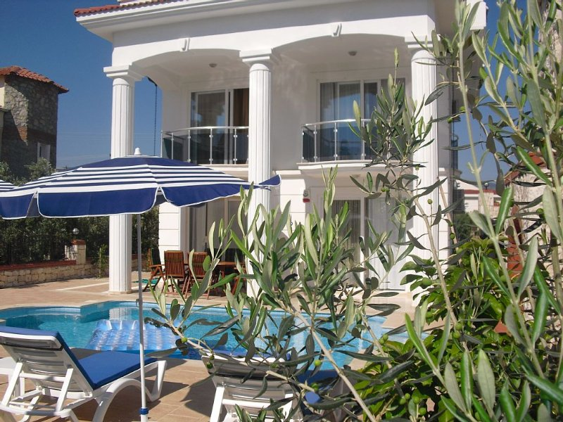 Detached Luxury Spacious Villa With Private Pool In Quiet Location, holiday rental in Fethiye