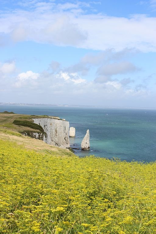 Old Harry from the coast path