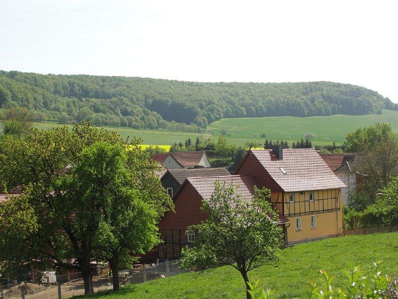 Familievriendelijk ruim en luxe vrijstaand vakantiehuis voor 8 tot 9 personen, aluguéis de temporada em Eschwege