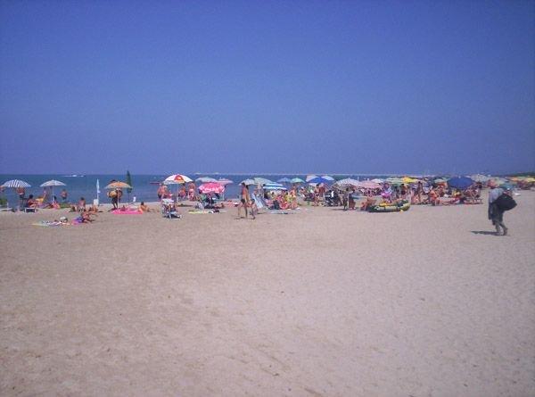 Villetta Indipedente 50 metri dal mare con giardino, vacation rental in Vada