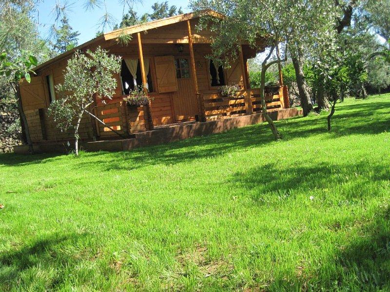 Villa vicino al mare, giardino verde, barbecue, aria condizionata, parcheggio, location de vacances à Capaci