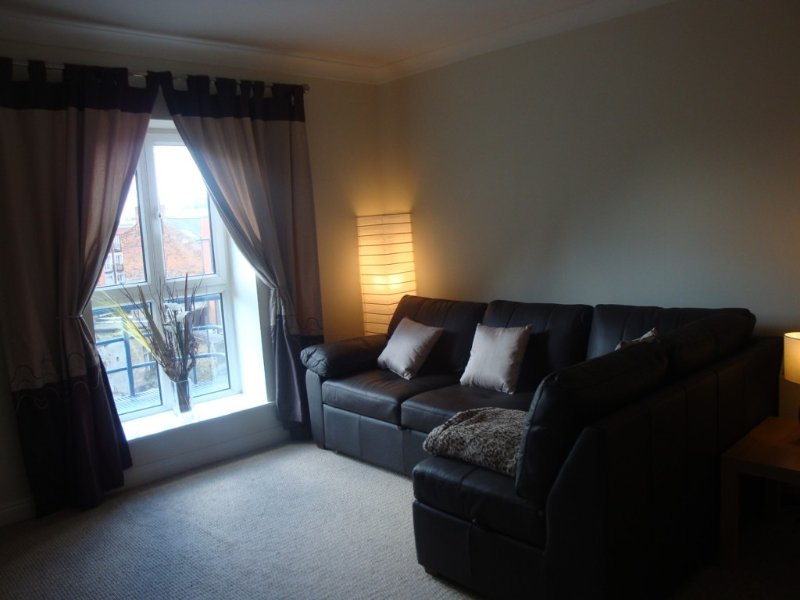 Homely apartment with WIFI in heart Dublin of city centre, holiday rental in Dublin