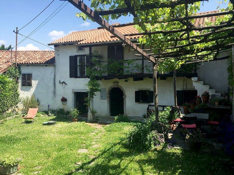 Picturesque Stone Cottage, casa vacanza a Crni Vrh