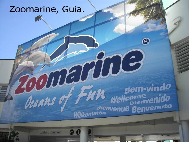 Zoomarine shows & amusements, only 20 minutes drive!