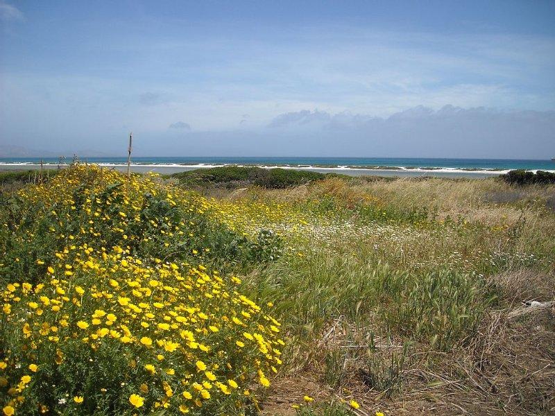Mare, Natura e Relax: casa vacanze a Stintino - Sardegna, Ferienwohnung in La Pedraia