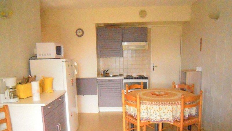 Appartement 2 pièces 32m2  Pégase/Phénix - Domaine des Sybelles (310 km de piste, holiday rental in Le Corbier