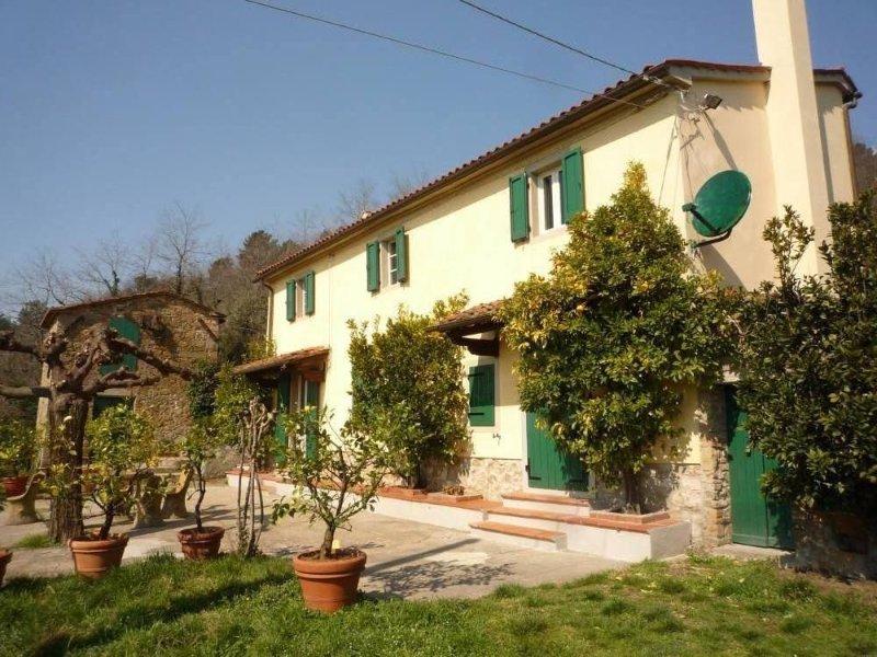 Casale Alta Toscana immerso tra gli ulivi, holiday rental in Serravalle Pistoiese