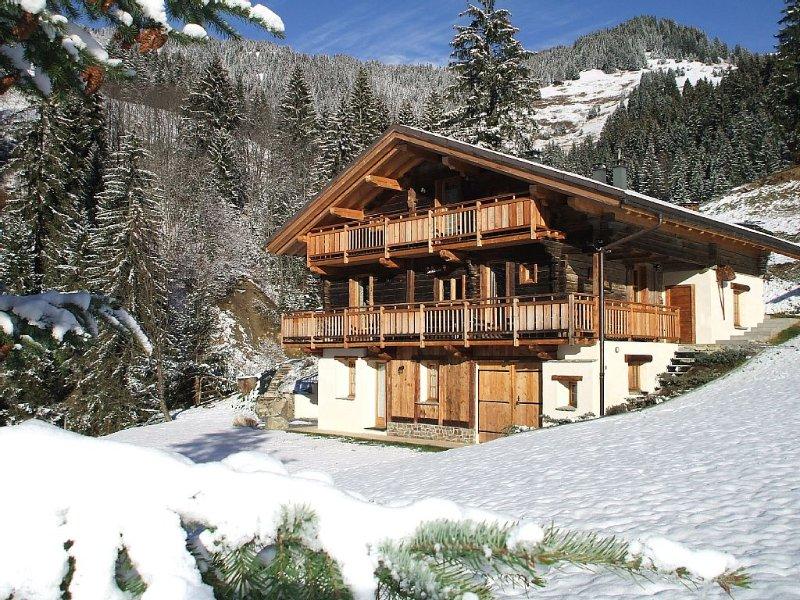 Chalet traditionnel  grand confort 4 étoiles avec SPA et départ skis aux pieds, location de vacances à Hauteluce