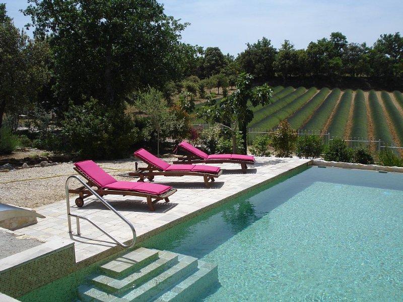 Piscine chauffée à débordement et privée. Jacuzzi, lavande, montagnes et vignes. – semesterbostad i Salles-sous-Bois