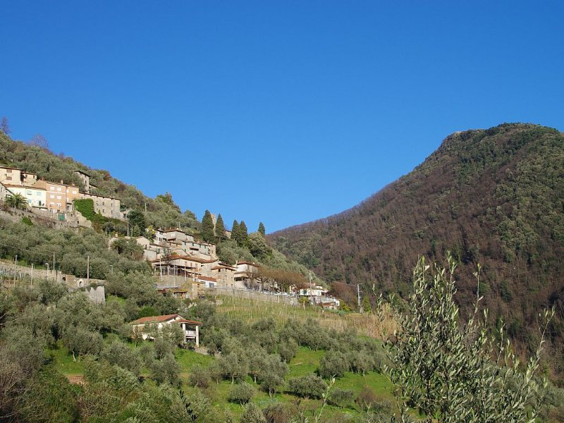 CASA D'AUTORE CON VISTA MARE DELLA VERSILIA con Wi-Fi & A/C, holiday rental in Nocchi