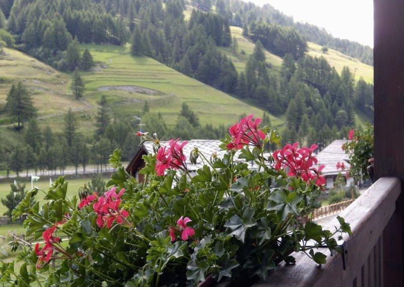 uitzicht vanaf het condominium terras