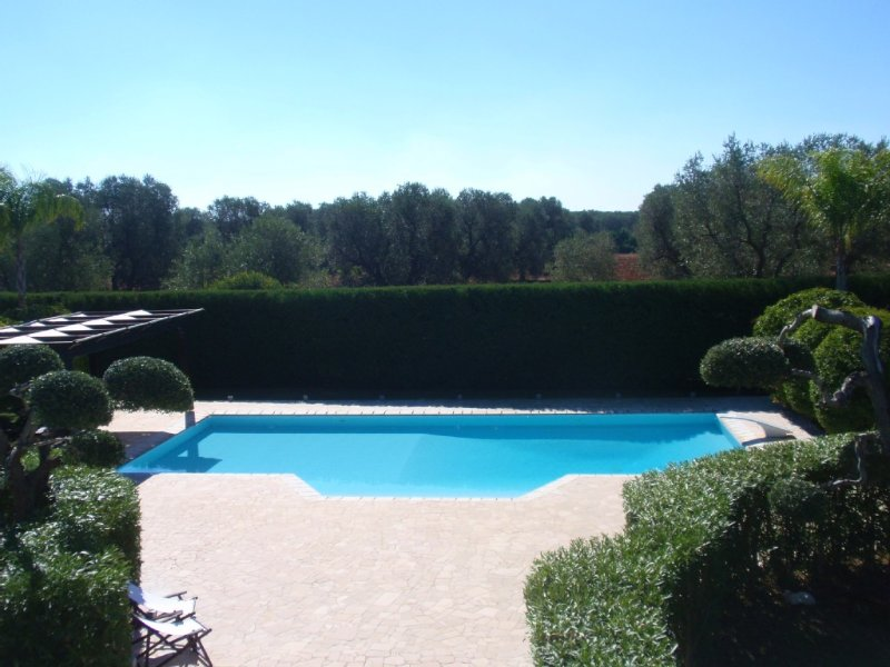 Pool from the roof terrace