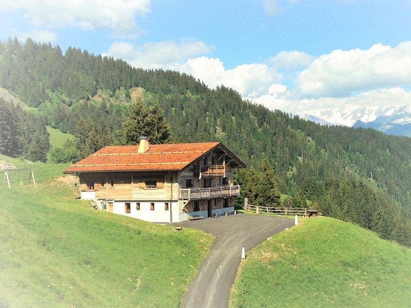 Les Saisies / Chalet  de HAUT STANDING 15 pers avec SPA Hammam et vue Mont Blanc, aluguéis de temporada em Savoie