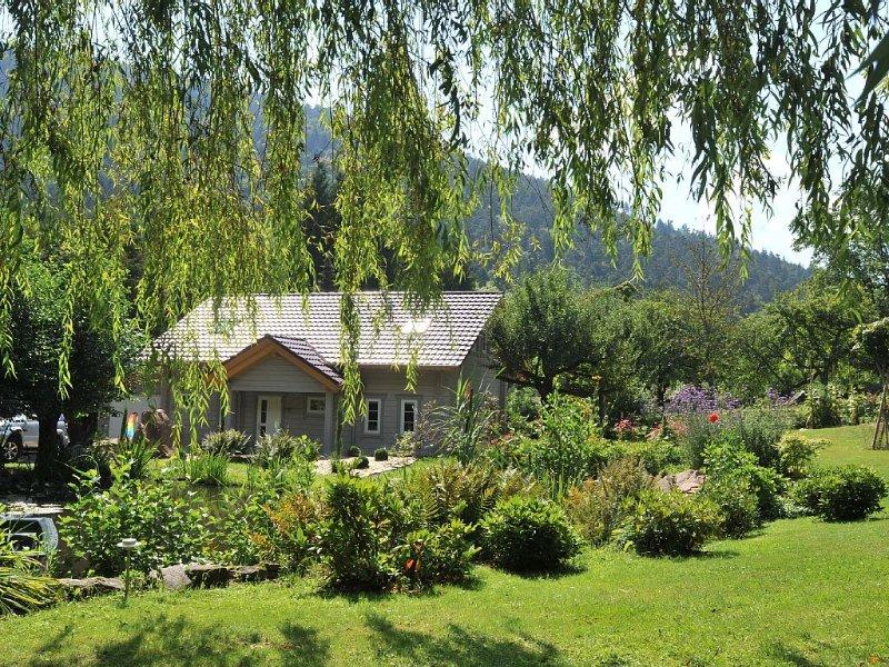 Luxury Villa with Happy Week End Deals!, holiday rental in Oberhaslach
