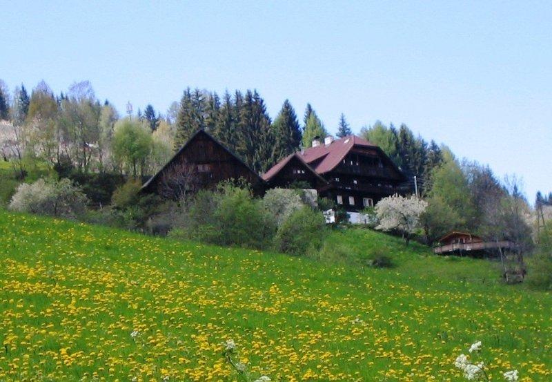 Altes Bauernhaus in 1100m Höhe zw. Katschberg und Millstätter See, holiday rental in Millstatt