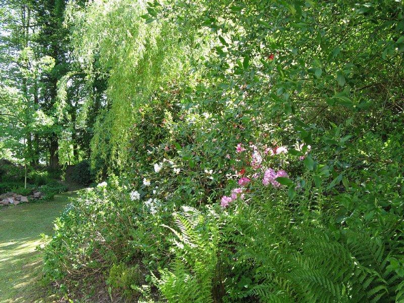 Ansicht Garten aus der Wohnung