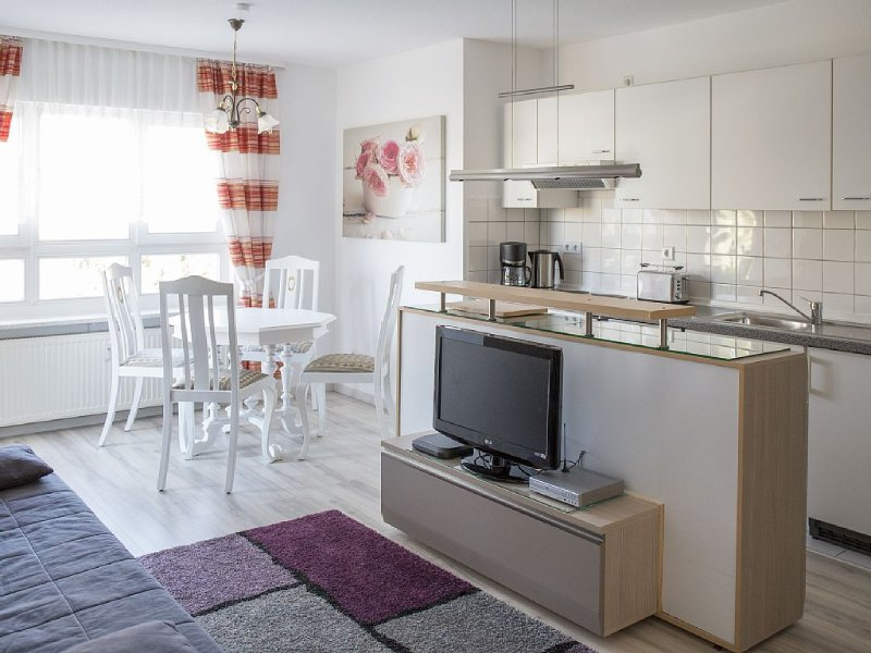 Dresden Strehlen - Charming apartment for two to four people, location de vacances à Dippoldiswalde