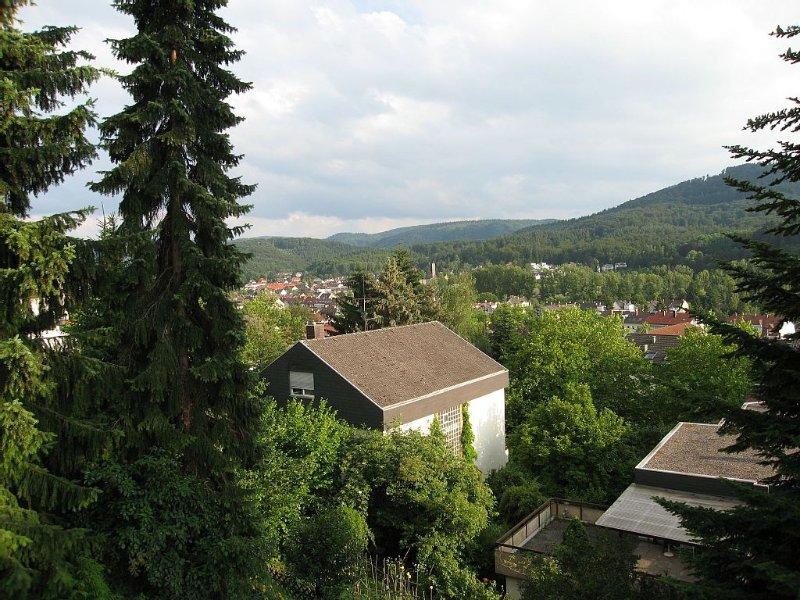 Blick in den Schwarzwald Richtung Innenstadt