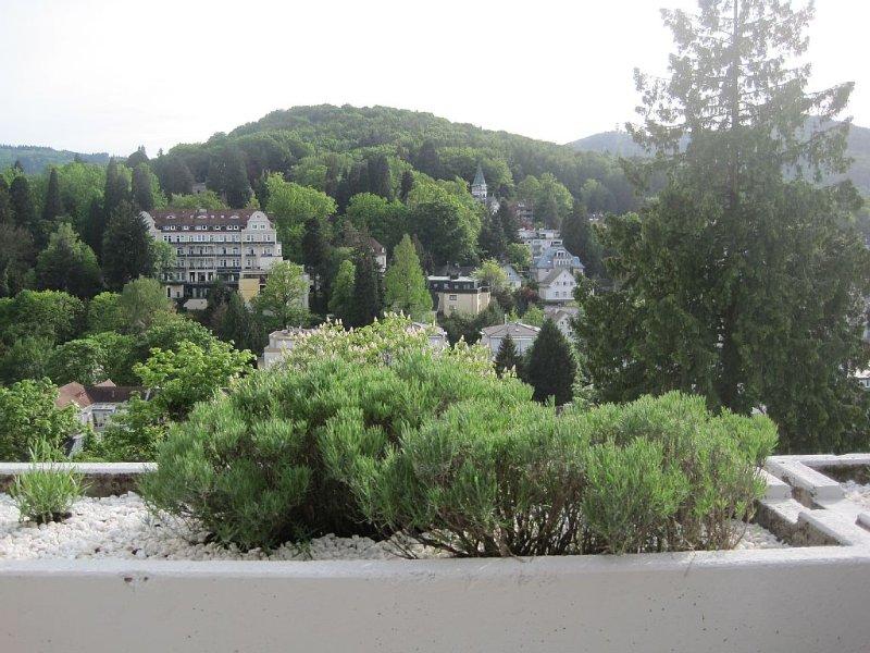 Appartment mit großer Sonnenterrasse und Panorama-Ausblick nähe Festspielhaus, holiday rental in Rastatt