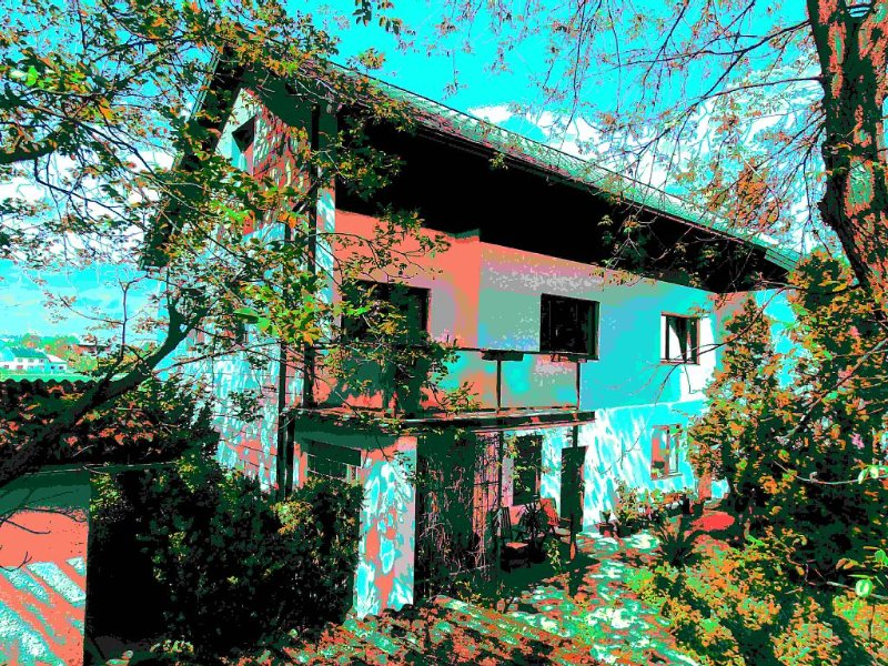 Walnut Tree House nach Andy Warhol