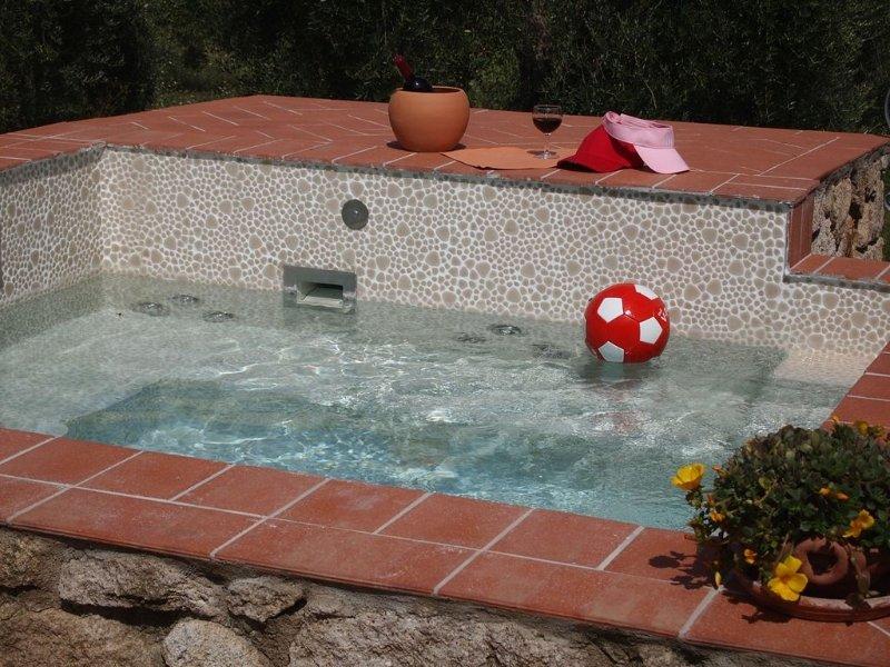 Sehr ruhiges Ferienhaus inmitten eines Olivenhains, ideal auch für Hunde, vacation rental in Sassofortino