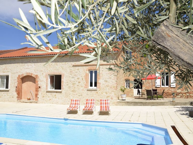 Cottage cottages, near Toulouse, in CARAMAN, holiday rental in Villenouvelle