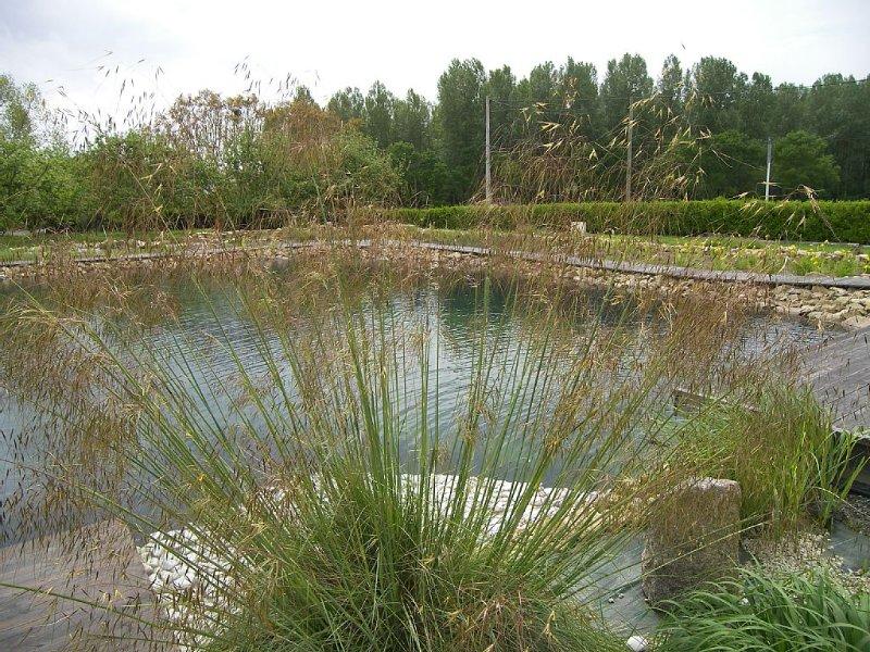 Location studio 2 pers chambre séparée jardin 7000m2 bassin écologique 650m2, alquiler de vacaciones en Langoat