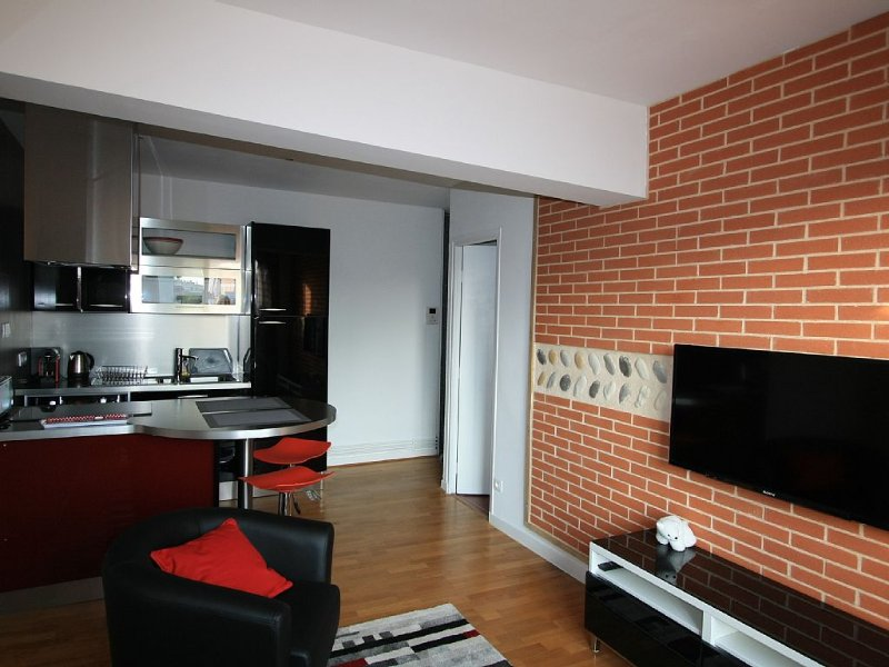 STUDIO 25M2 ON COURTYARD - DISTRICT BUSCA GARDEN, vacation rental in Toulouse