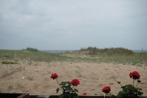 F2 en rez-de-jardin, jardin privatif, tres proche mer face a l Ocean, vacation rental in Capbreton