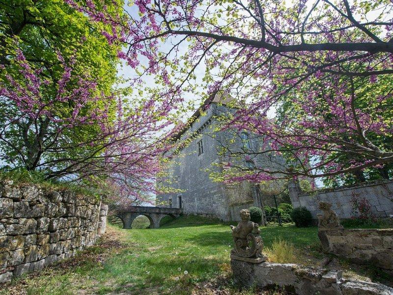 Castillo Goudourville en el suroeste de Francia