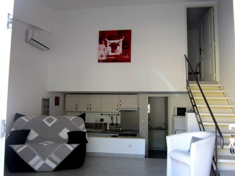 Appartement saisonnier au coeur de Maussane les Alpilles, idéal pour un couple, location de vacances à Maussane-les-Alpilles