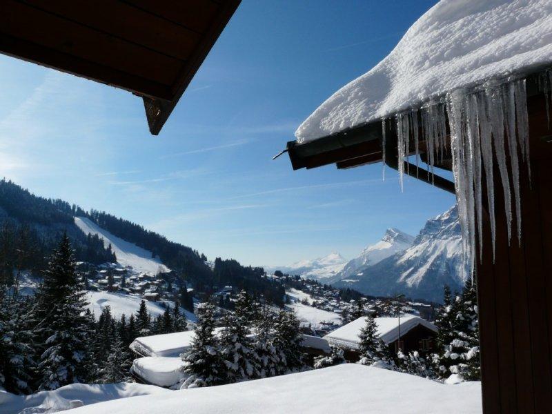 APPARTEMENT 3 ETOILES dans Chalet  - 300 m des pistes - 6 PERSONNES - AUX CARROZ, casa vacanza a Araches-la-Frasse