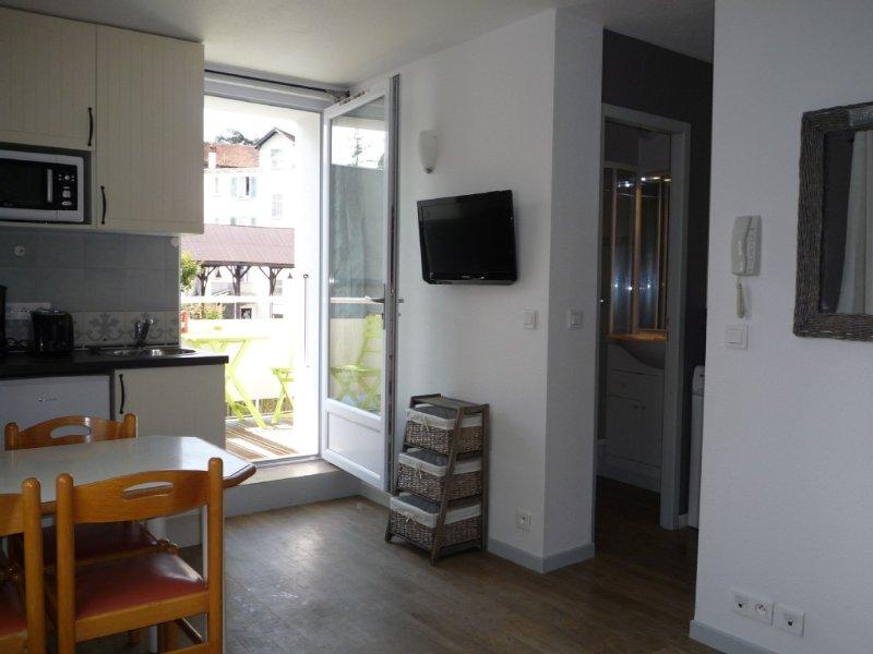 Studio avec balcon et parking privé centre ville, 2 personnes, vacation rental in Thonon-les-Bains