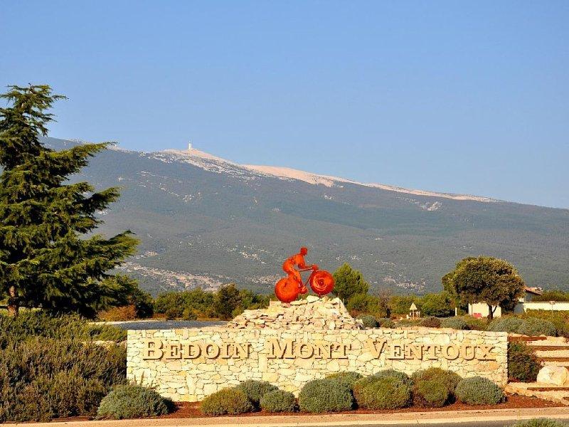 Villa indépendante au pieds du Mt Ventoux, location de vacances à Bedoin