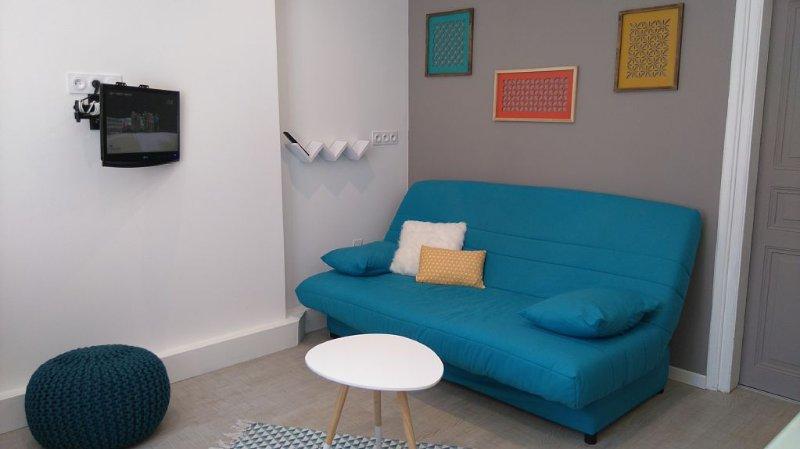 Bel appartement entièrement rénové au coeur de Millau - Idéal pour 4-5 personnes, aluguéis de temporada em La Roque-Sainte-Marguerite