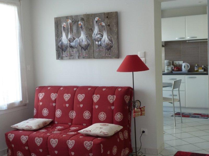 Appartement, Stud 1 chambre, 1 couchage, proche centre ville, entièrement équip, vacation rental in Gerardmer