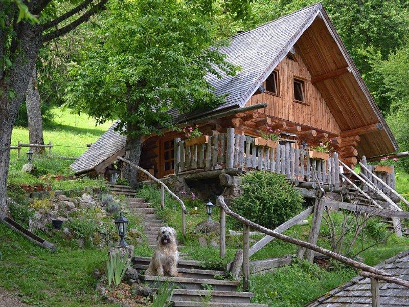 Chalet fully schlitteur log, alquiler vacacional en Breitenau