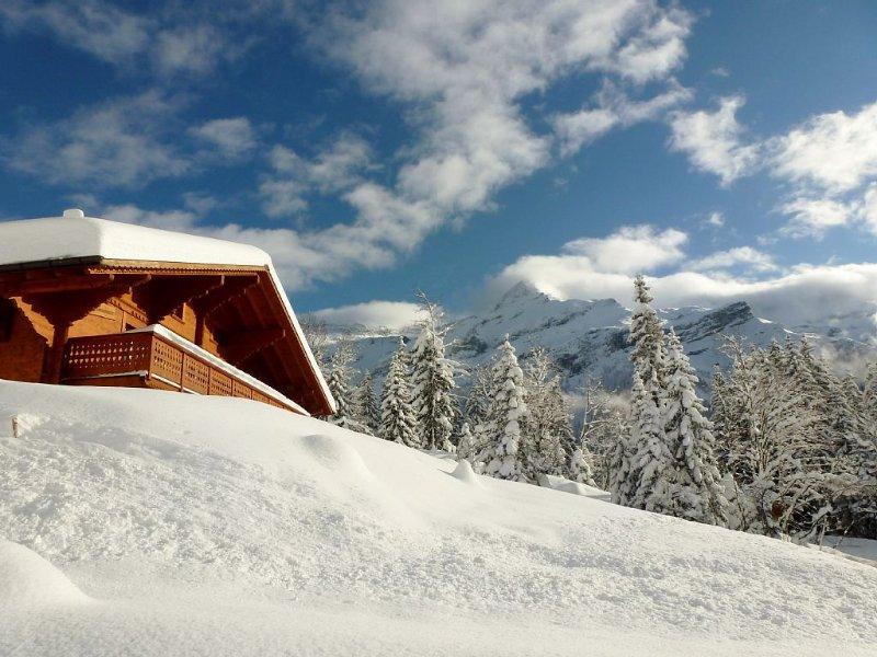 Magnifique chalet ensoleillé, expose sud, grand confort, vue Glacier Diablerets, casa vacanza a Les Diablerets