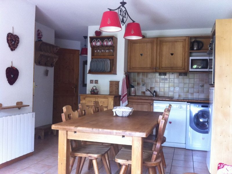 Appartement dans un chalet à la station des 2 Alpes, pour 6 personnes, alquiler vacacional en Les Deux-Alpes