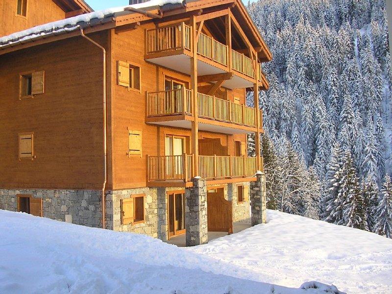 Appartement dans résidence de standing avec piscine et wifi à 250m des pistes, location de vacances à Ugine