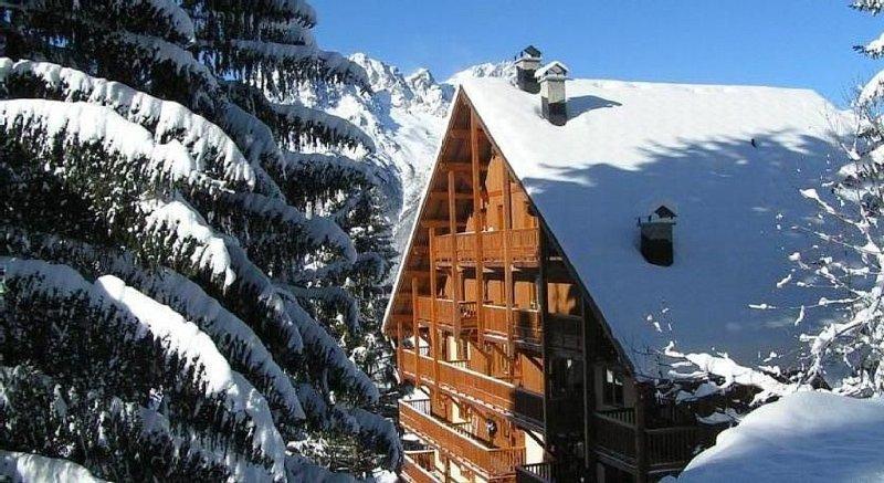 Bel appartement et balcons sur les pistes! Piscine , sauna, hammam et fitness, location de vacances à Allemond