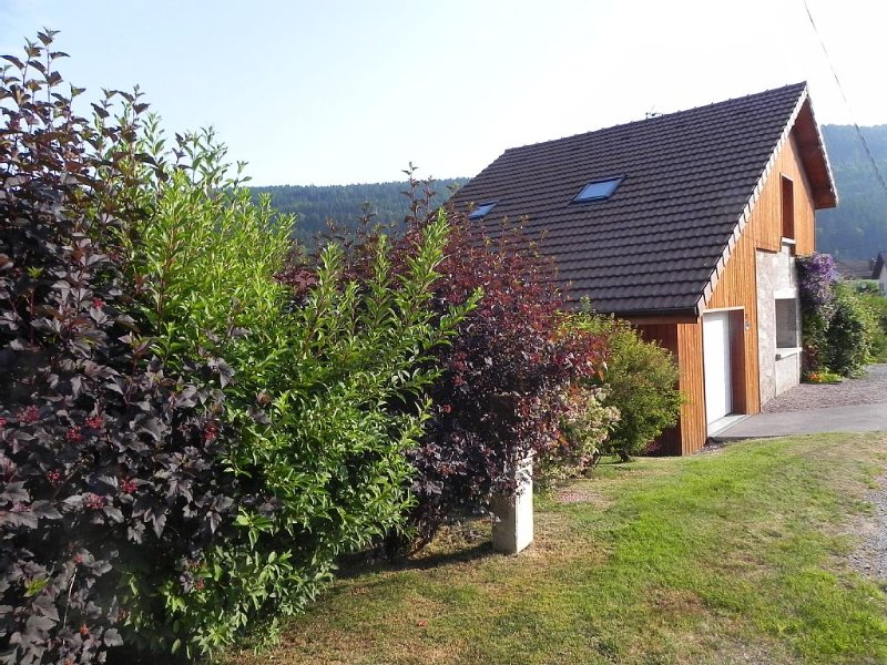 Chalet very comfortable with the tip of the lake equipped with WIFI at 200 m fr, alquiler de vacaciones en Gerardmer