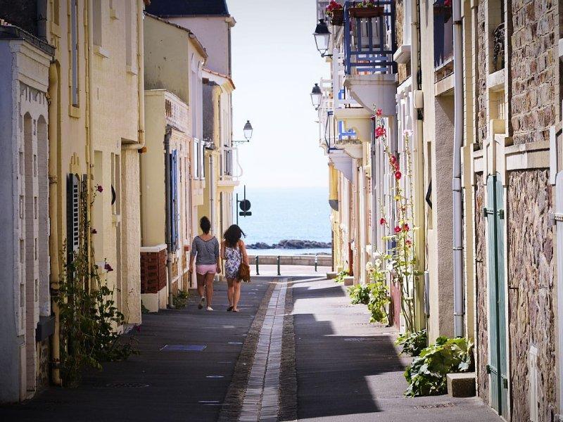 LE CHALET SABLAIS A 100 METRES DE LA PLAGE DES SABLES D'OLONNE , ATYPIQU, location de vacances à Les Sables d'Olonne
