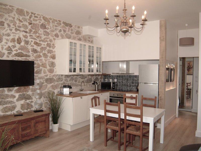 Le charme du village provençal au cœur de Cannes, à côté des plages et Palais, holiday rental in Cannes