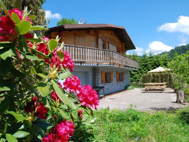 Chalet de montagne tout confort, au pied des pistes, vacation rental in La Bresse