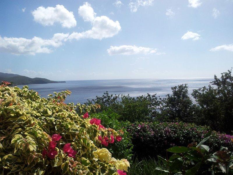Vue exceptionnelle 180 ° sur la mer des caraibes, location de vacances à Bouillante