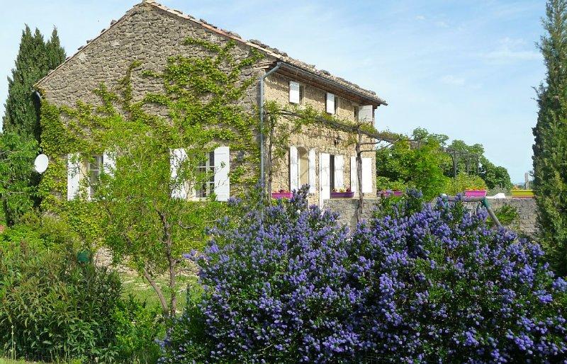 Entre Vaison-la-Romaine et  Mont Ventoux  Maison provençale  à l'orée de Faucon, vacation rental in Puymeras